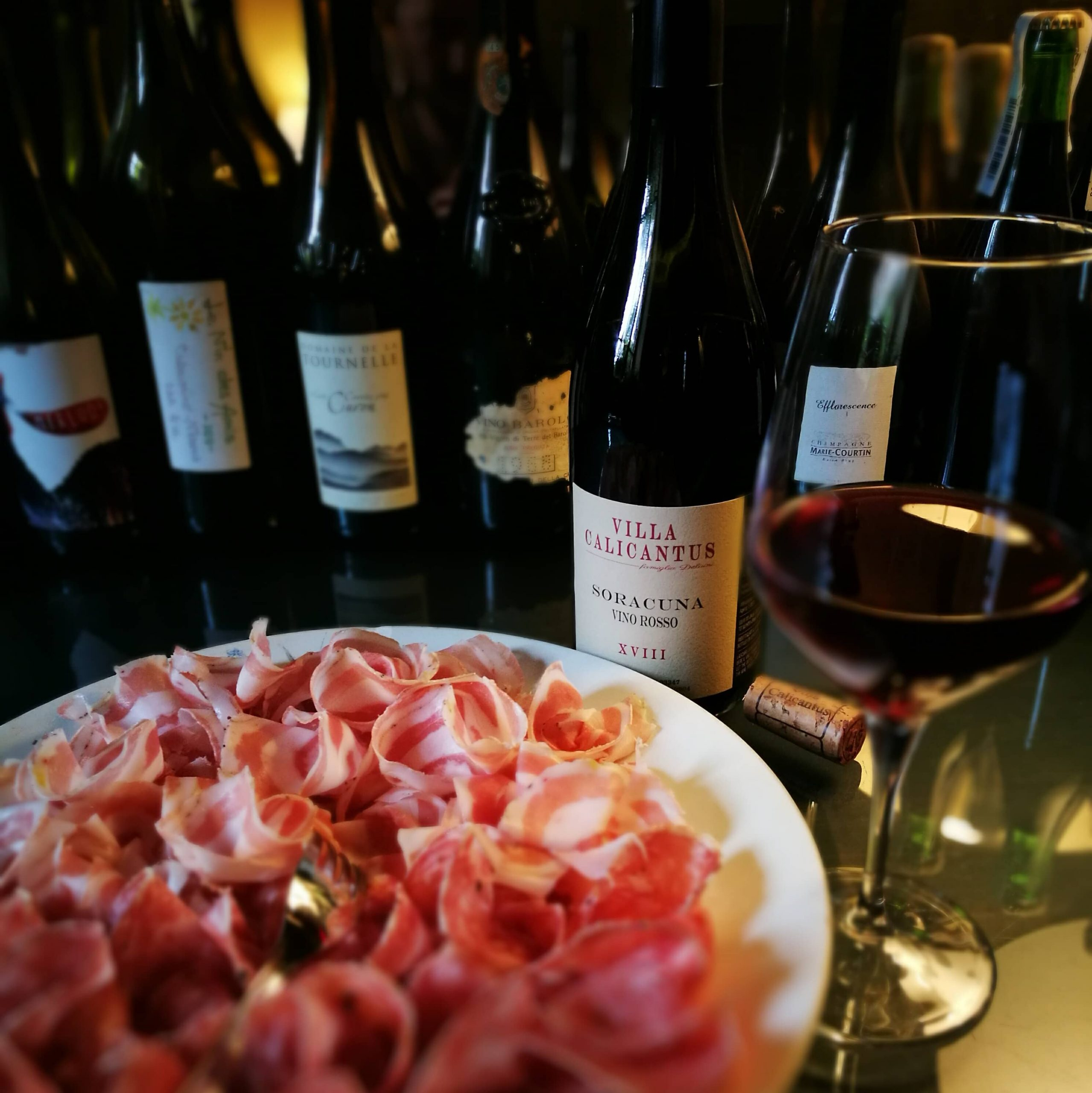 Degustazioni di vino a Bardolino Lago di Garda Villa Calicantus
